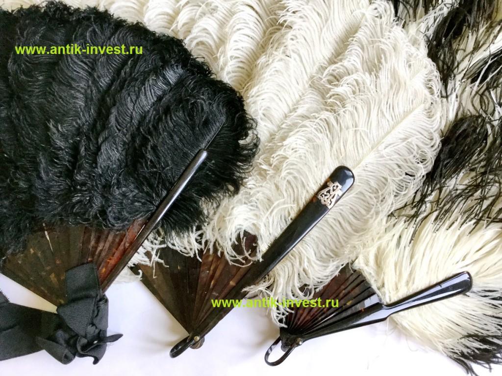 купить перьевой старинный веер конца 19 начала 20 века